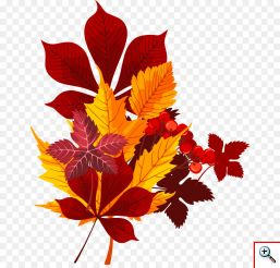 kisspng-leaf-red-euclidean-vector-hand-painted-cherry-red-leaf-pattern-5aa30df3e39531.0523268815206353799322
